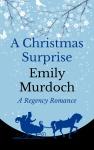 a-christmas-surprise